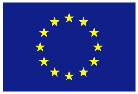 EU Flag - EU Russia Cooperation - bioliquids application in CHP plants